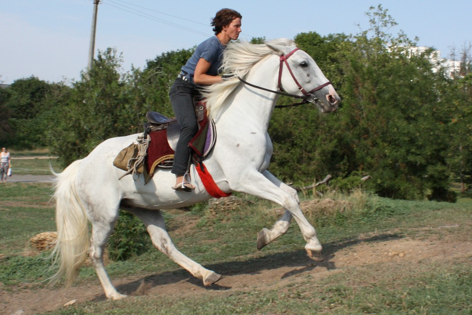 cropped-Odessa_riding_shool.jpg
