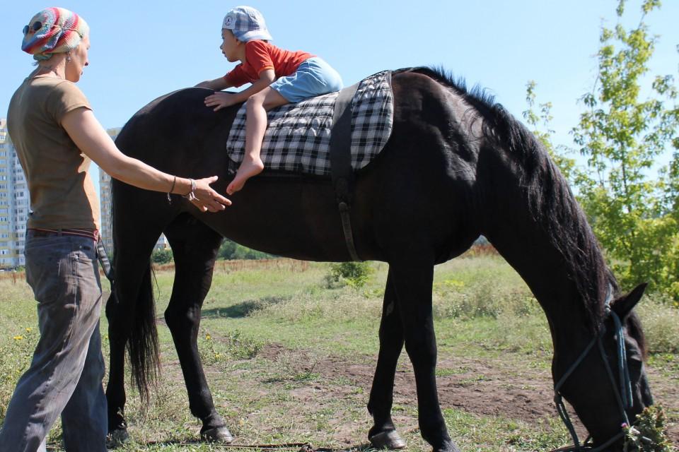 Реабилитация с помощью лошади