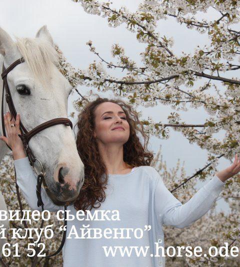 фото прогулка с лошадью